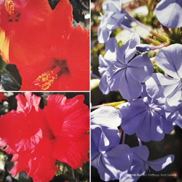 Photo Canvas Print Floral Collage 01