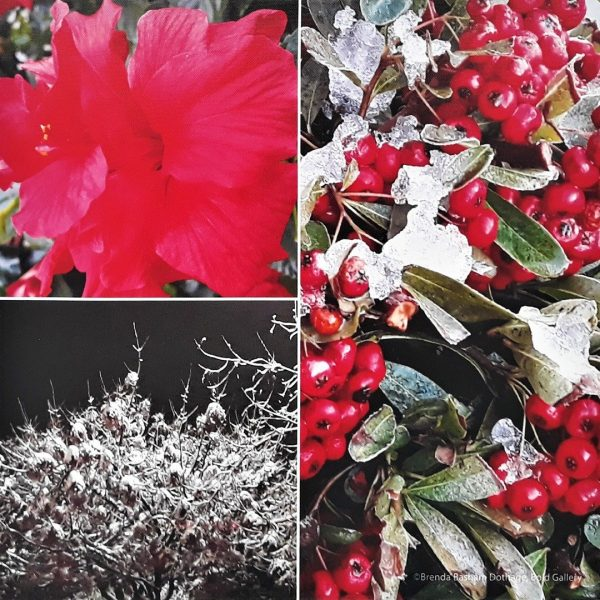 Photo Canvas Print Floral Collage 02