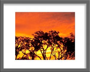 Original Photograph Sunset 04