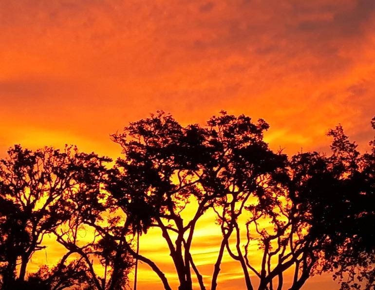 Fall Sale Sunset